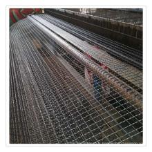 Acier inoxydable serti de treillis métallique usd dans l'aquaculture