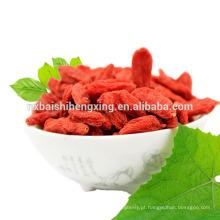 Ningxia goji berries distribuidores por grosso necessários