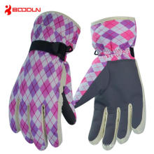 Full Finger Sports Ski Glove for Winter (BD15007)