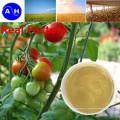 Agriculture organique Aminoacides à base de légumes purs à base de chlorure