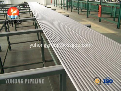 Heat Exchanger Seamless Tube SA213 TP310S TP310H Suppiler