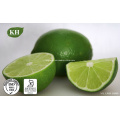 Цитрусовые поли-метоксилированные флавоны (PMFs) от Kingherbs