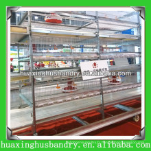 Layer Chicken Cages for Zimbabwe Poultry Farm