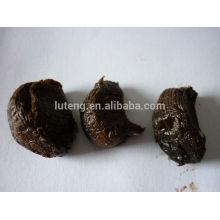 Китай ферментированный черный чеснок с высоким качеством для продажи