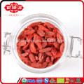 Ningxia barbary wolfberry fruits en gros