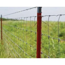 farm fence metal posts with T shape post