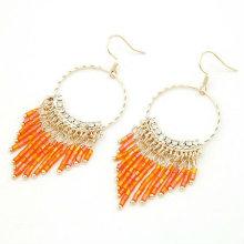 2013 moda com cercadura brincos jóias com 5 cores de mistura FE16