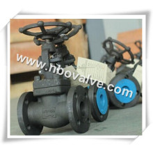 RF Forged Steel Gate Valve (G47H)