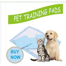 Pet pad training products OEM brand