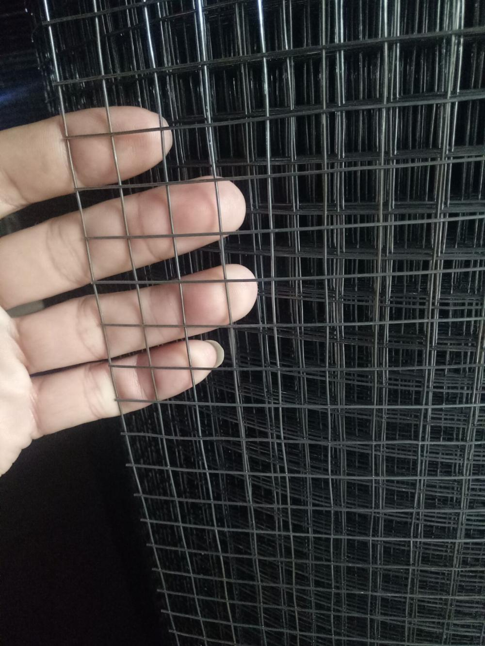 Galvanis PVC Coated dilas Wire Mesh