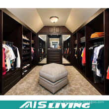 MDF Plywood Portable Wardrobe Modular Closet (AIS-W352)