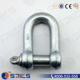 CE Forged European Type Large D Shackle