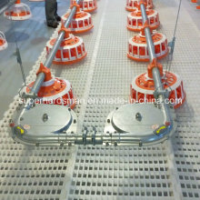 High Quality Automatic Feeding System for Chicken