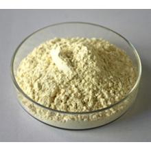 Natural Panax Notoginseng Extract
