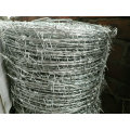 2017 Cheap Weight Barbed Wire for Hot Sale