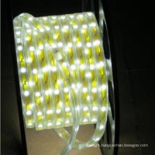 Factory Hot Sale Bright High Quality 3 Years Warranty Flexible LED Strip Lights 220V