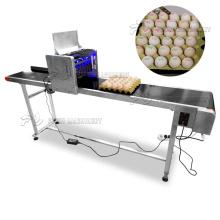 Commercial egg printing machine/inkjet printer for eggs/egg continuous inkjet printing machine
