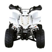 110CC KIDS ATV (FA-E110)