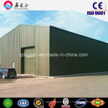 Construction Design Metal Framed Warehouse (SSW-193)