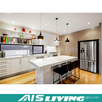 European Style Furniture Storage Kitchen Cabinets (AIS-K974)