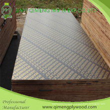 Waterproof Glue Poplar Core 18mm Shuttering Plywood for Construction