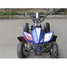 500W большой мощности взрослый складной электрический скутер (Et-Eatv004)