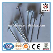 ISO 9001 Electro Galvanized Mushroom&umbrella head roofing nails