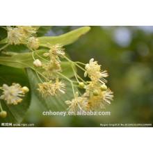Miel de citron vert