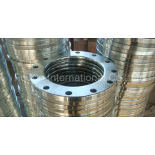 Forged Carbon Steel / Stainless Steel Lap Joint Flange
