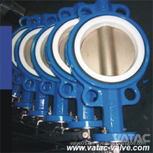 Concentric Wafer/Semi-Wafer Ggg40&Ggg50 Pn16 Butterfly Valve