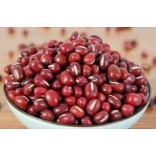 Маленькие красные бобы сухие
