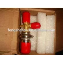 expansion valve hot gas