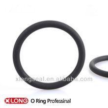 Pumpe gebrauchter EPDM O Ring