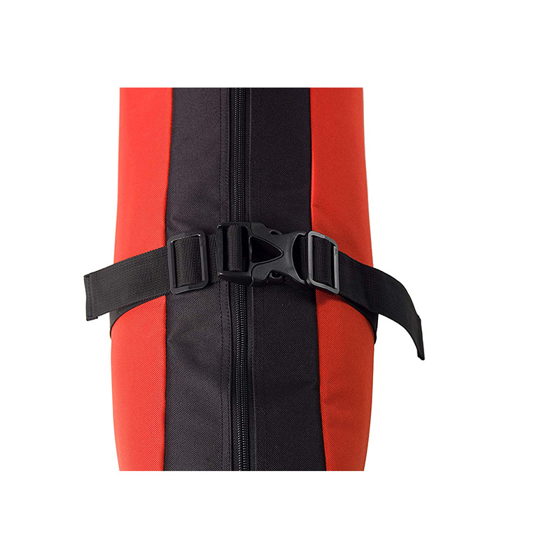 padded ski bag
