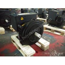 Generador sincrónico Brushless 224D de la CA 40kw