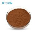 Phellinus Igniarius Extract powder