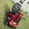 500 Watt Motor Handicapped Electric Vehicle Scooter (DL24500-2)
