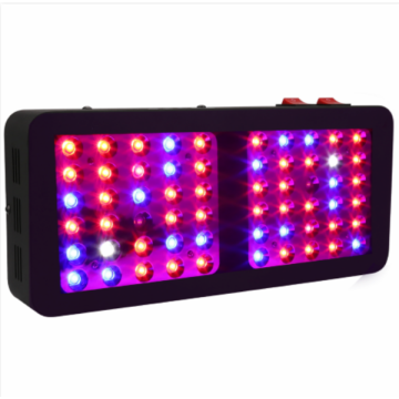 High PAR Value Grow Light LED for Flowers