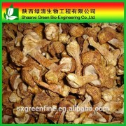 High Quality Natural Agaricus Extract Agaricus Blazei Extract