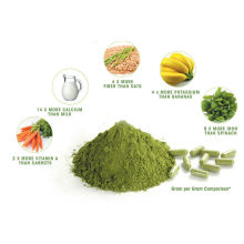 Moringa supplier from india