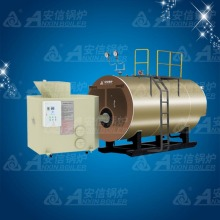 Biomass Pressure Hot Water Boiler