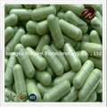 Probiotics Vegan Capsule in Bulk