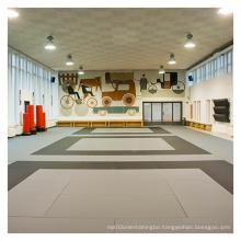 LinyiQueen judo mat landing crash pad pvc roll floor muay thai  tatami judo roll mats for sale wrestling grappling judo mat