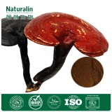 High quality Organic Ganoderma extract/Reishi Mushroom extract/Lingzhi extract