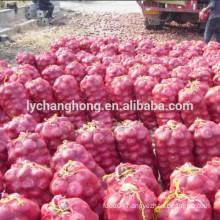 Wholesale new fresh onion for export 5-7cm, 6-8cm, 8cm up