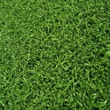 Durable Plastic Golf Carpet Grass
