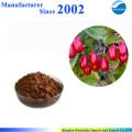 Heißer Verkauf hochwertiger reiner Natur Cornus-Extrakt, Cornus-Pulver, Cornus-Pulver-Extrakt