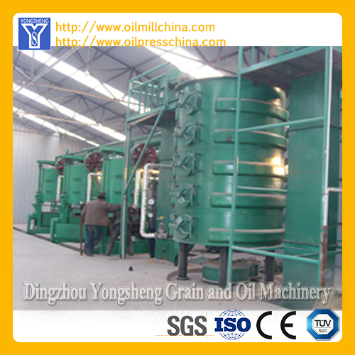 Vegetable Oil Producing Line
