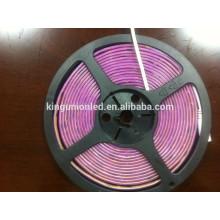 Smd5050 DC12V 24v 3528 120led / m led strip light