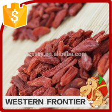 free of pollution high quality nourishing blood goji berry